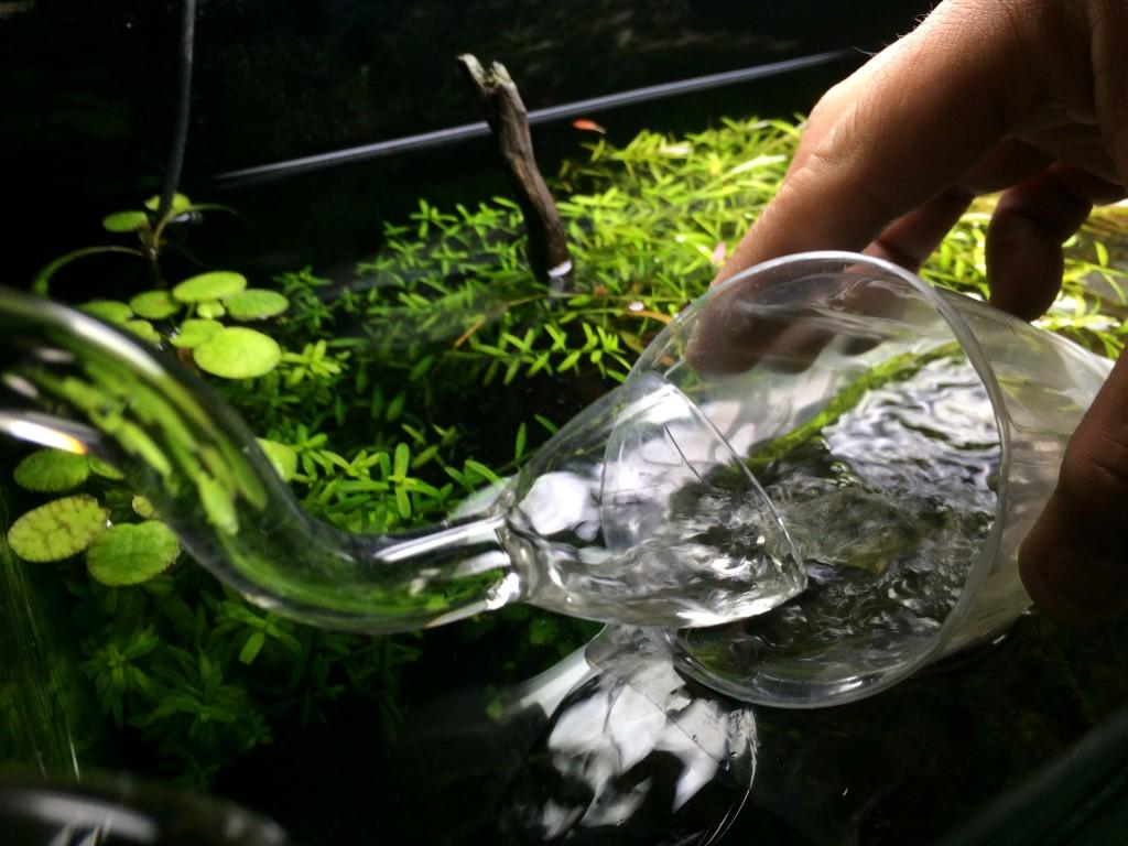 リリィパイプの排水