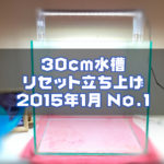 30cm水槽リセット立ち上げ 2015年1月 No.1