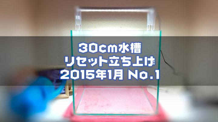 30cm水槽リセット立ち上げ2015年1月No.1