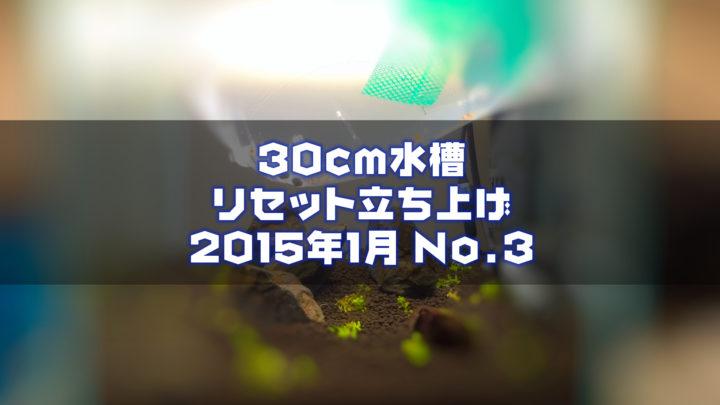 30cm水槽リセット立ち上げ2015年1月No.3完成?