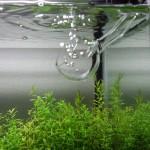 ADAのガラスパイプ類をホースから安全に外す方法!初めて使う方必見