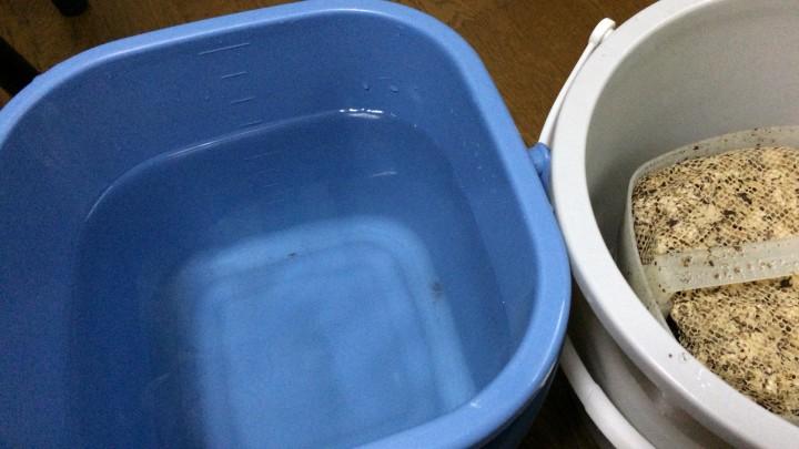 ろ材を飼育水で濯ぐ