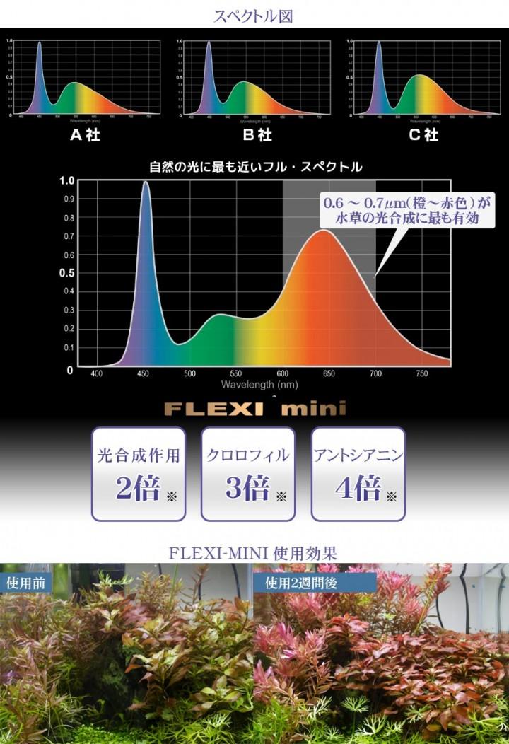 FLEX miniのスペクトル表