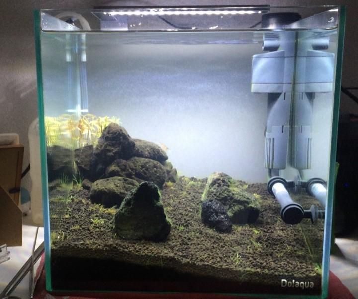 FLEXI miniを水槽へ設置