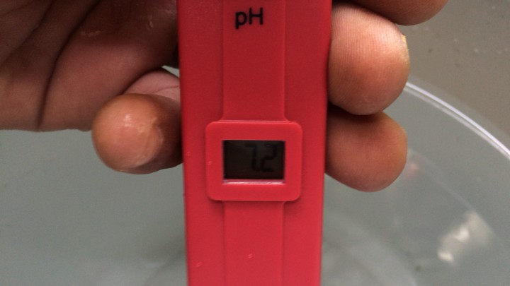 水道水のpHを計る