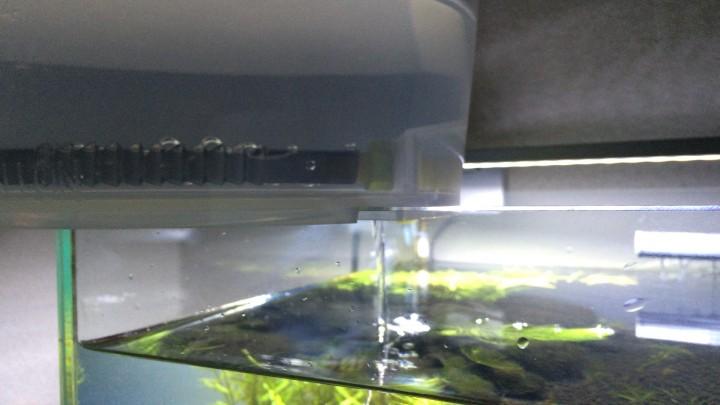小型水槽の水換えにコック付きバケツを使う
