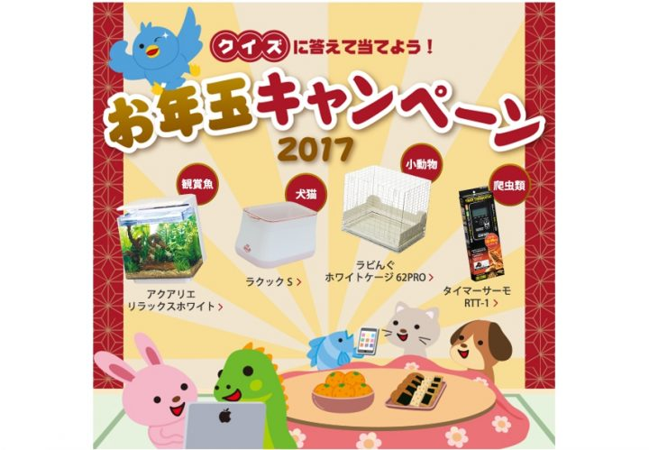 GEXお年玉キャンペーン2017