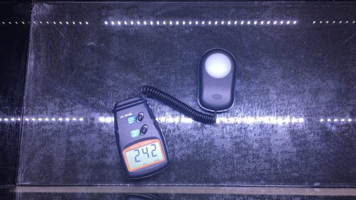 LED照明のCLEAR LED POWER X600の照度測定