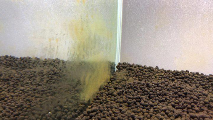 茶ゴケ・珪藻がガラス面に発生