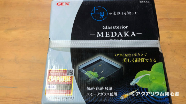 GEX グラステリア MEDAKA 上見