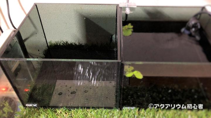 超小型水槽を設置場所にセッティング