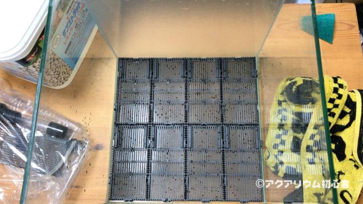 30cmキューブ水槽全体に底面フィルターを設置