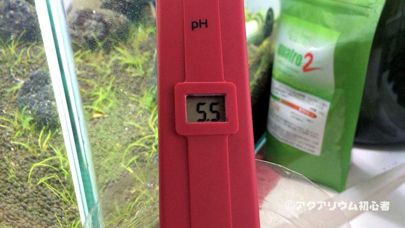 照明点灯時水槽水のpHが5.5になった30cm水槽 38日目