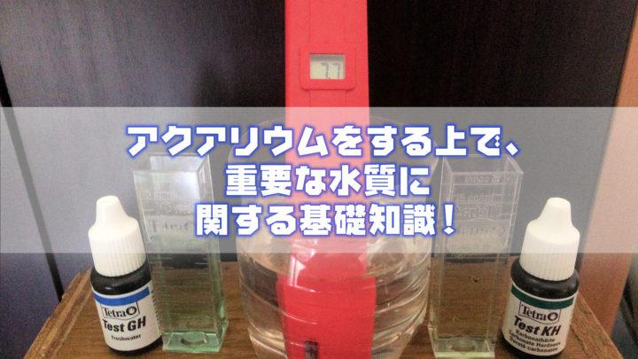 アクアリウム水槽の水質に関する基礎知識
