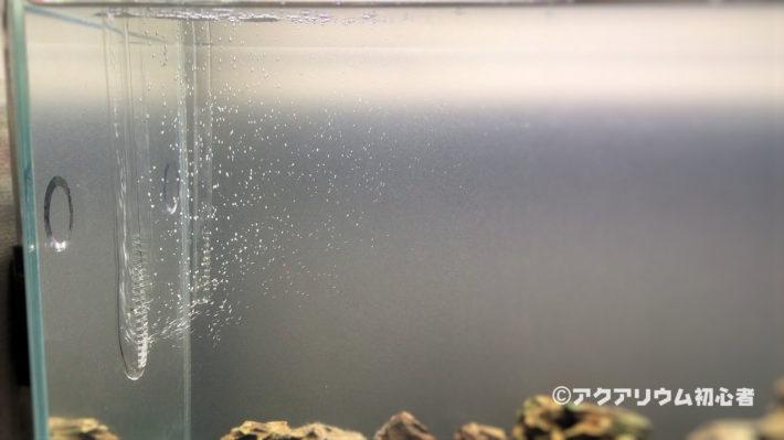 バイオレットグラス・吸水用を排水側に利用