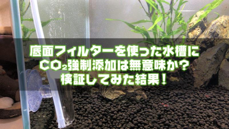 底面フィルターを使った水槽にCO2強制添加は無意味か?