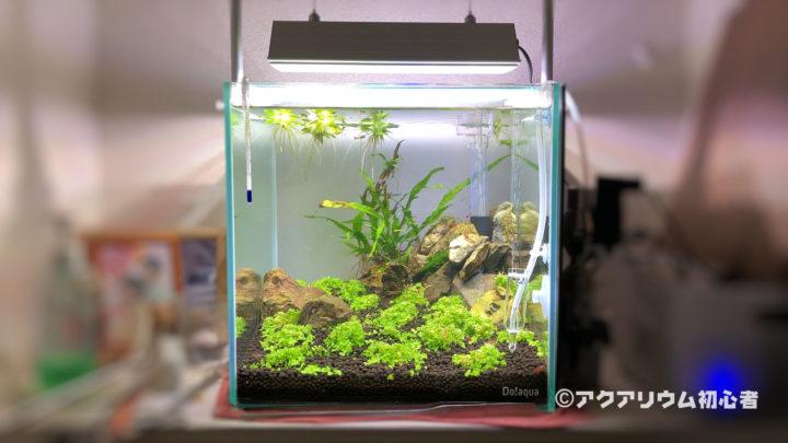 TRIANGLE LED GROW300を設置した水草水槽