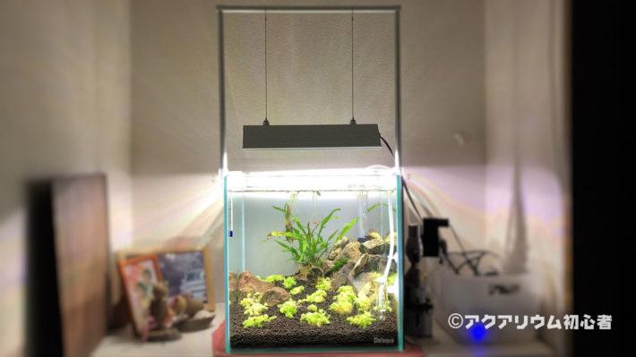 アクロ TRIANGLE LED GROW 300に照明を変更