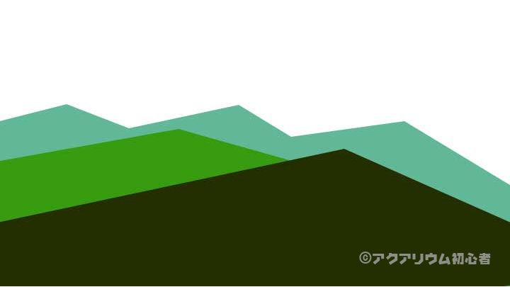 水草レイアウト色彩遠近法