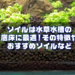 ソイルは水草水槽の底床に最適!その特徴やおすすめソイル。