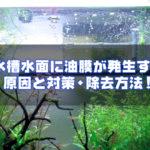水槽水面に油膜が発生する原因と対策・除去方法!