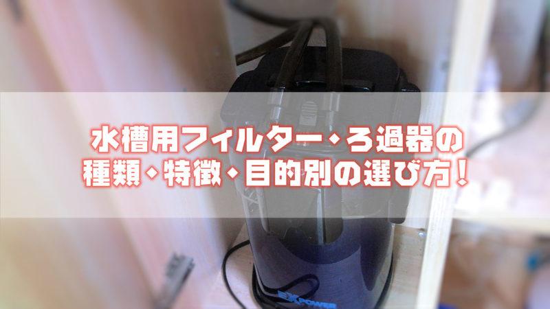 水槽用フィルター・ろ過器の種類・特徴・目的別の選び方!