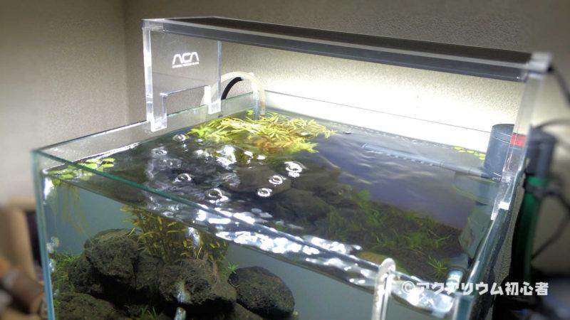 エアレーションで水槽水面が揺れた状態